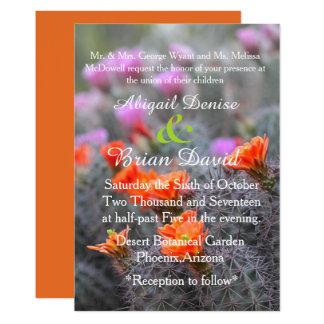 Colors of the desert orange background card