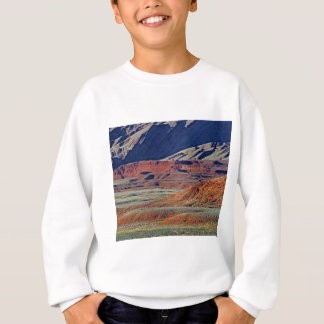 colors of the desert sweatshirt