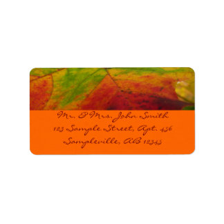 Colors of the Maple Leaf Autumn Nature Photography Label