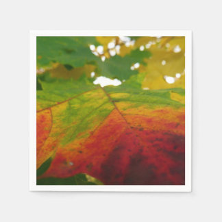 Colors of the Maple Leaf Autumn Nature Photography Paper Napkins