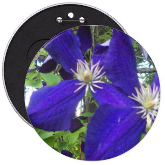 "Colossal 6"" round button with violets"