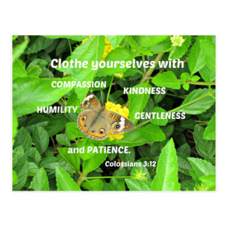 Colossians 3:12 Clothe yourselves with compassion Postcard