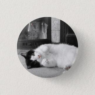 Colour Splash Cat 1 Inch Round Button