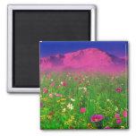 Colourful Colorado, Pikes Peak Mountain Fridge Magnet