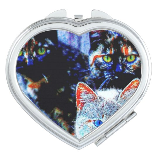 Colourful Curious Cats Compact Mirror