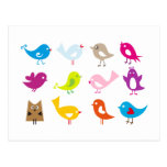Colourful cute birds postcard