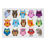 Colourful cute owls poster
