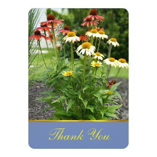 Colourful Daisies Thank You Card