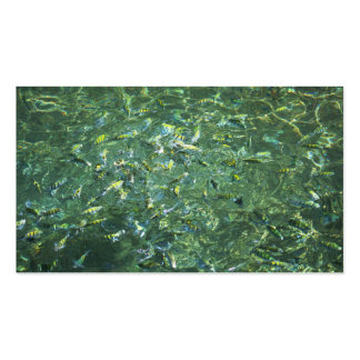 Colourful fish in clear water in Saint Lucia Business Card