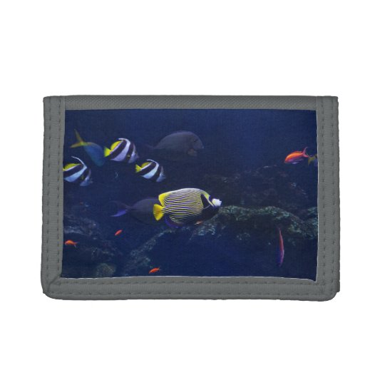 Colourful Fish Under Water Tri-fold Wallet