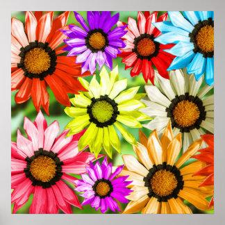 Colourful gerbera flower floral design poster