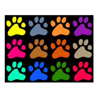 Colourful Paws Postcard