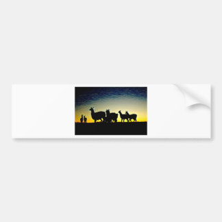 Colourful Shadows Bumper Sticker