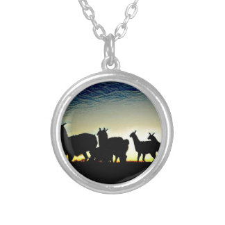 Colourful Shadows Silver Plated Necklace