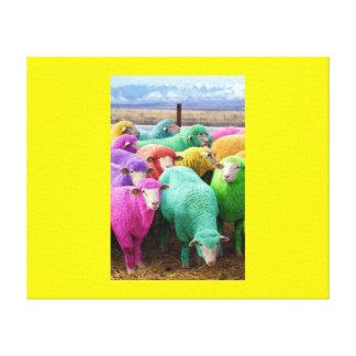 Colourful Sheep Canvas Print