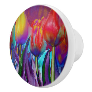 Colourful Spring Ceramic Knob