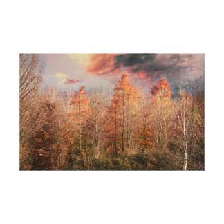 colourful trees in park in autumn canvas print
