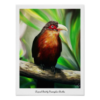 Colourful tropical Bird painting poster