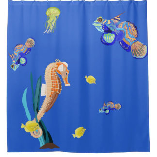 Colourful tropical fish and Seahorse
