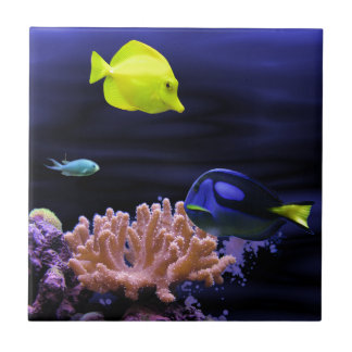 Colourful Tropical Fish Tile
