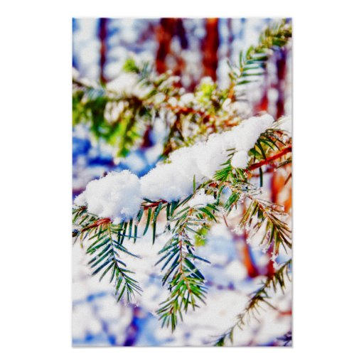 Colours in the Snow Posters