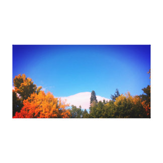 Colours of Fall Canvas Print