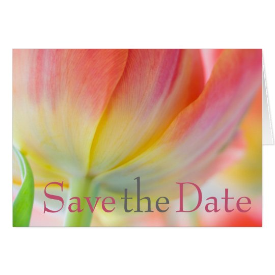 Colours of Spring Tulip Save the Date Card