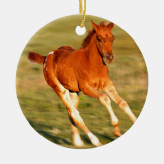 Colt In Motion Round Ceramic Ornament