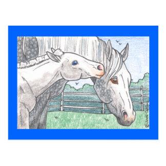 """""""Colt Kisses 2"""" Postcard"""