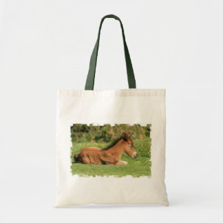 Colt Resting in Grass Tote Bag