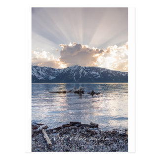 Colter Bay Sunset Postcard