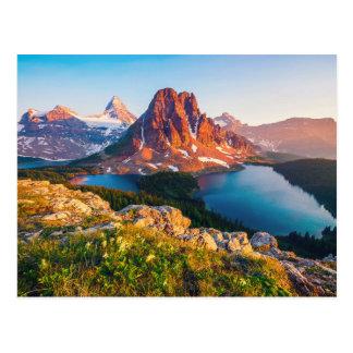 Columbia Lake in British Columbia Canada Postcard