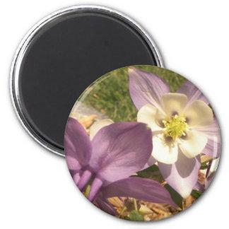 Columbine facing flowers decorative magnet