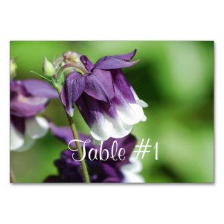 Columbine Flowers Card