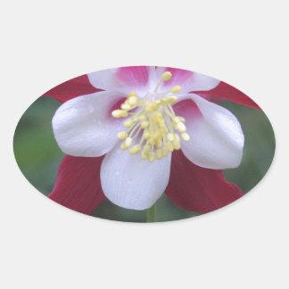 Columbine Oval Sticker