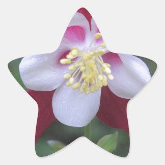 Columbine Star Sticker