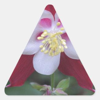 Columbine Triangle Sticker