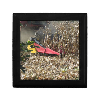 Combine harvesting corn crop in cultivated field gift box