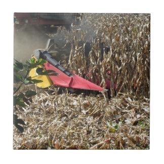 Combine harvesting corn crop in cultivated field tile