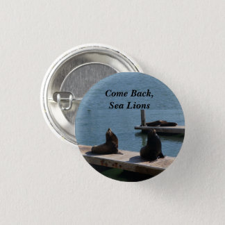 Come Back SF Pier 39 Sea Lions #3 Pinback Button