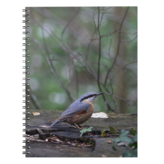 Come fly with ME Notebooks