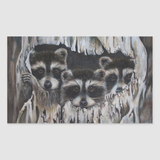 """""""Come on in"""" three raccoons in a tree"""