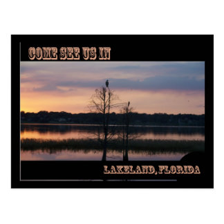 Come see us in Lakeland, FL Postcard