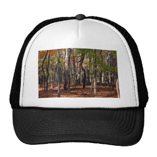Come the Night Trucker Hat