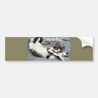 """Come To Papa"" Cat Bumper Sticker"