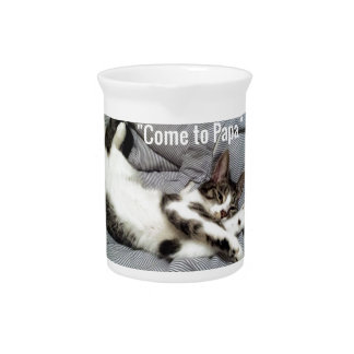 """""""Come To Papa"""" Cat Pitcher"""