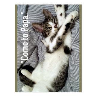 """Come To Papa"" Cat Postcard"