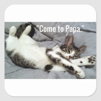 """Come To Papa"" Cat Square Sticker"
