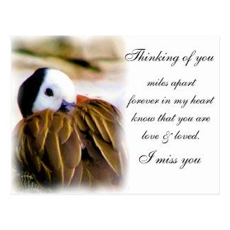 Comfort of love_ postcard