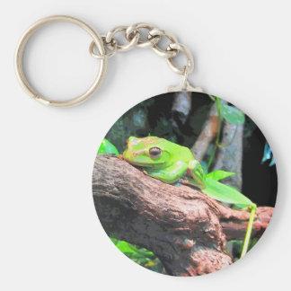 Comic Book Tree Frog Key Chain